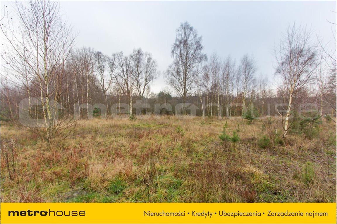 Działka rolna na sprzedaż Jelonek, Borne Sulinowo  30900m2 Foto 7