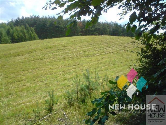 Działka rolna na sprzedaż Pupki  3519m2 Foto 1