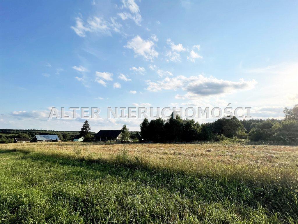 Działka rolna na sprzedaż Pawełki  8300m2 Foto 2