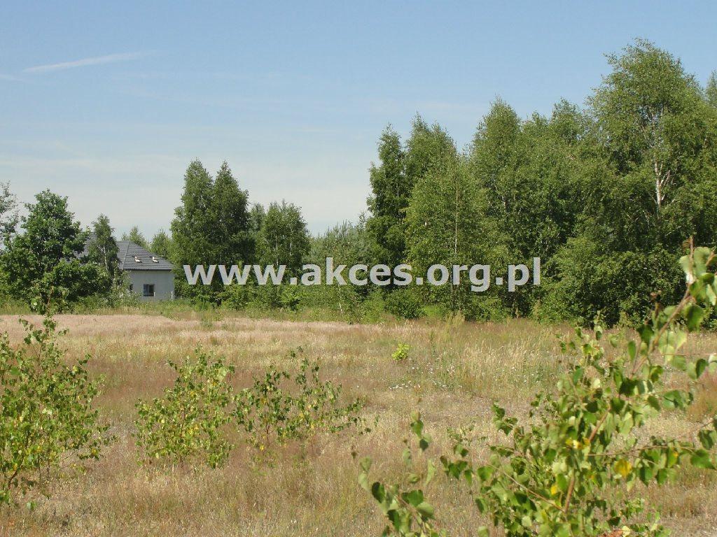 Działka rolna na sprzedaż Dobrzenica  40900m2 Foto 4