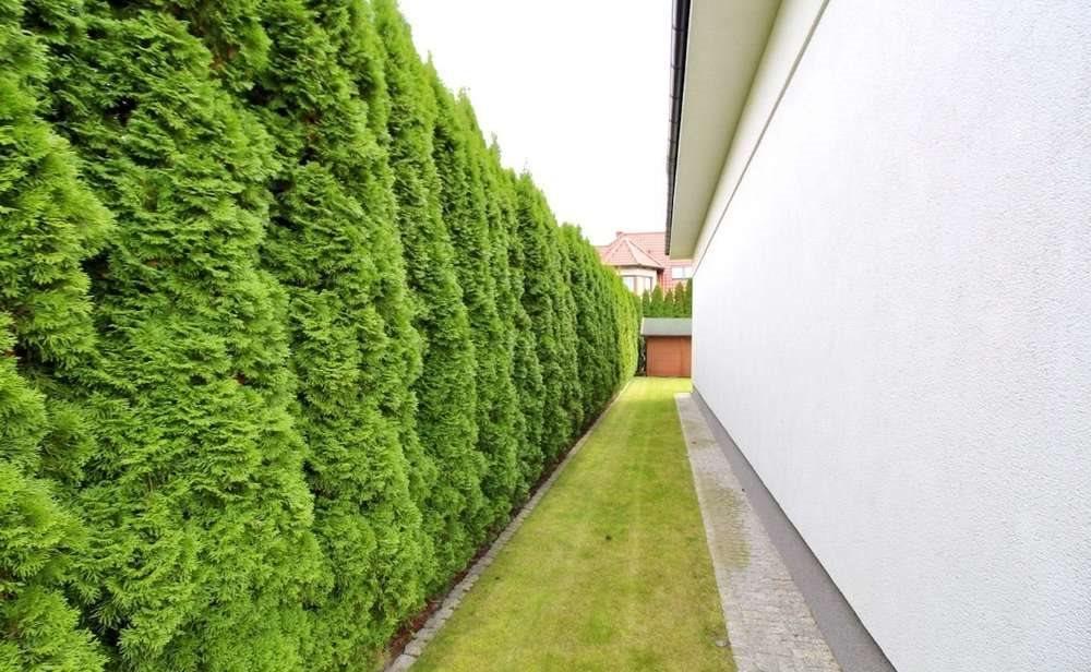 Dom na sprzedaż Chyby  366m2 Foto 3