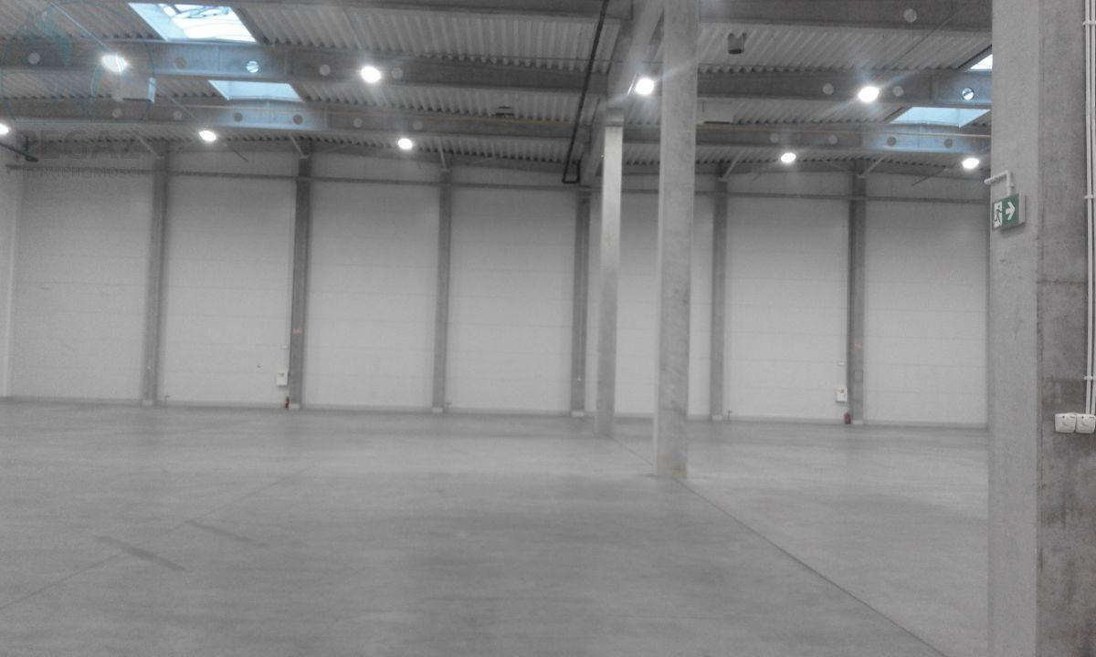 Lokal użytkowy na sprzedaż Kostrzyn  2422m2 Foto 9