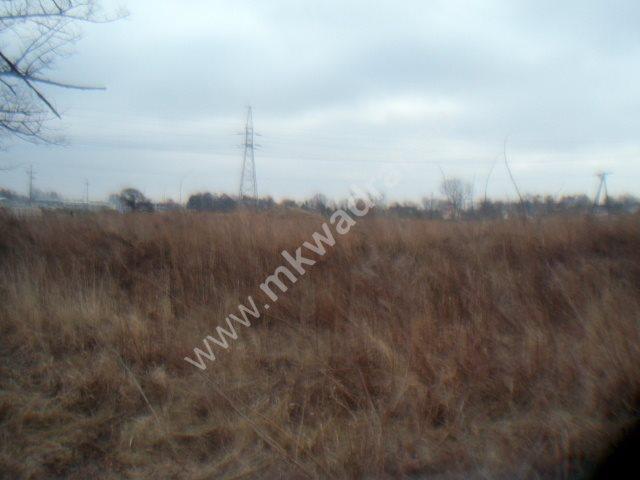 Działka inwestycyjna na sprzedaż Chrzanów Duży  2793m2 Foto 3