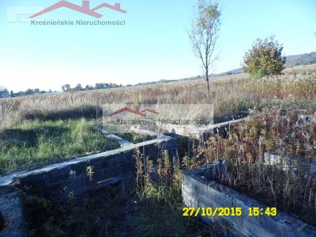 Działka budowlana na sprzedaż Korczyna  4500m2 Foto 6