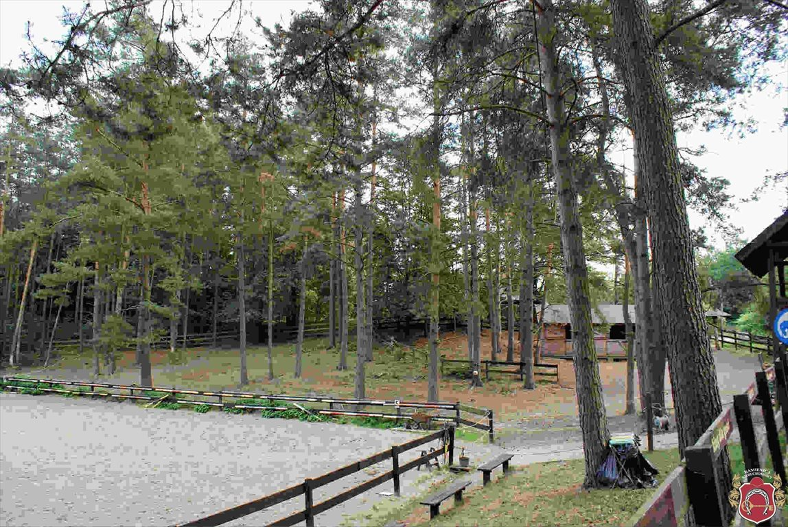 Lokal użytkowy na sprzedaż Borkowo  83m2 Foto 11