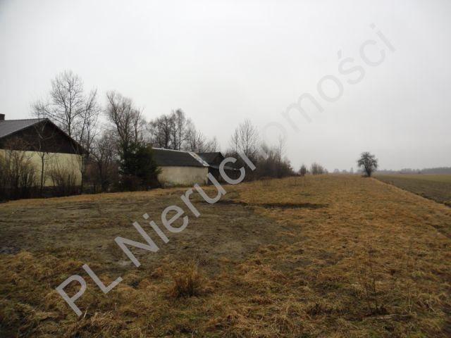 Działka rolna na sprzedaż Tyborów  1000m2 Foto 4