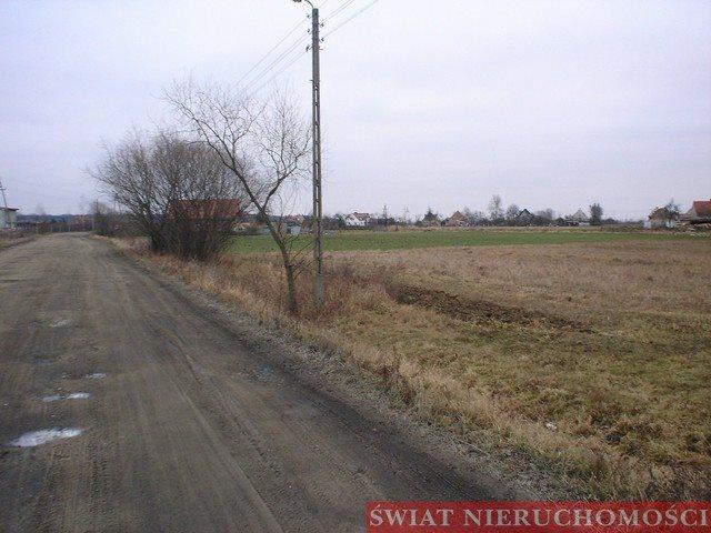 Działka budowlana na sprzedaż Kotowice  2000m2 Foto 6