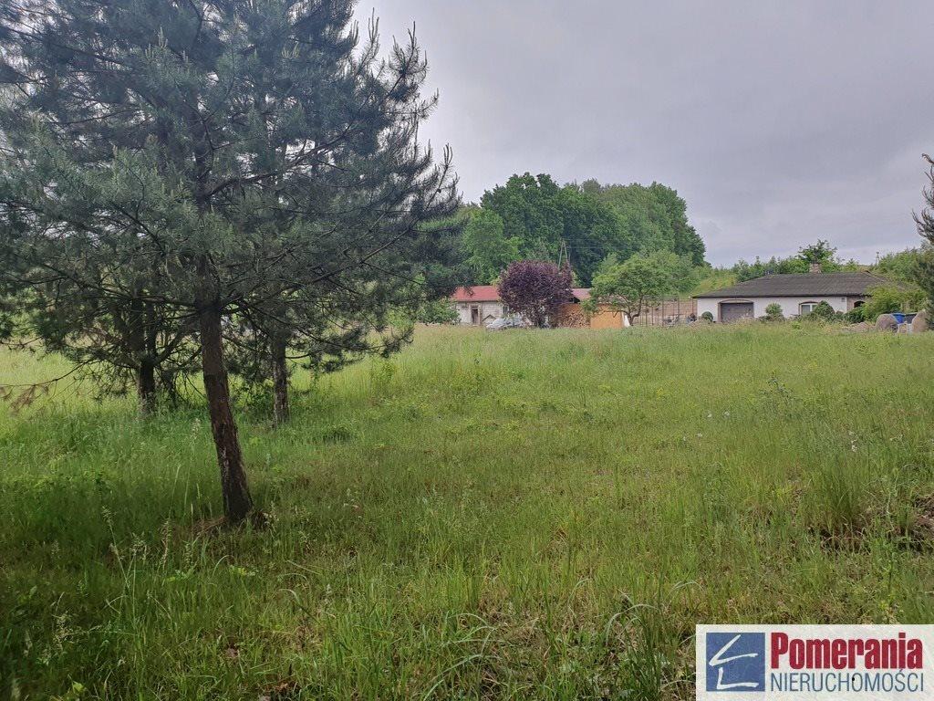 Działka rolna na sprzedaż Szczecin, Śmierdnica  3271m2 Foto 3