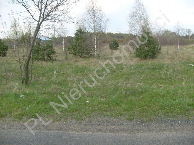 Działka rolna na sprzedaż Mszczonów  18000m2 Foto 5