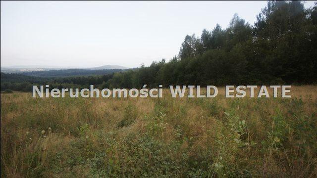 Działka rolna na sprzedaż Lesko, Huzele  88812m2 Foto 5
