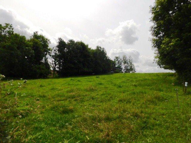 Działka rolna na sprzedaż Szczepanki  92900m2 Foto 7
