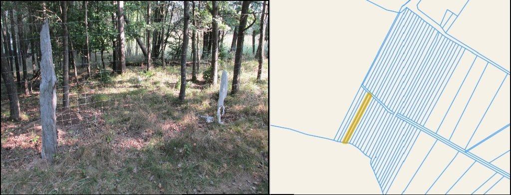 Działka leśna na sprzedaż Starkowo  1600m2 Foto 1