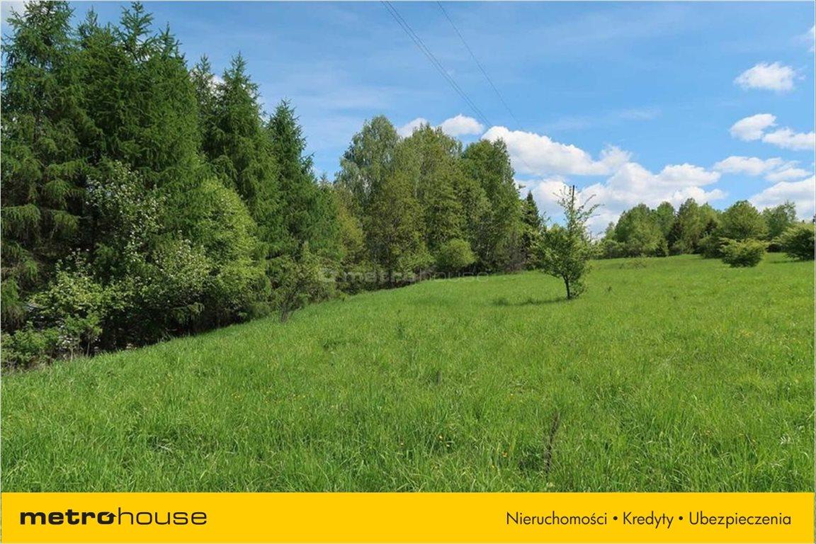 Działka rolna na sprzedaż Huta Mińska, Mińsk Mazowiecki  1037m2 Foto 2