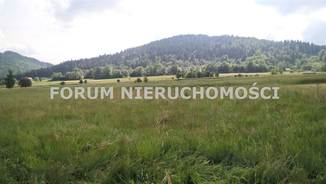 Działka rolna na sprzedaż Słotwina  1600m2 Foto 5