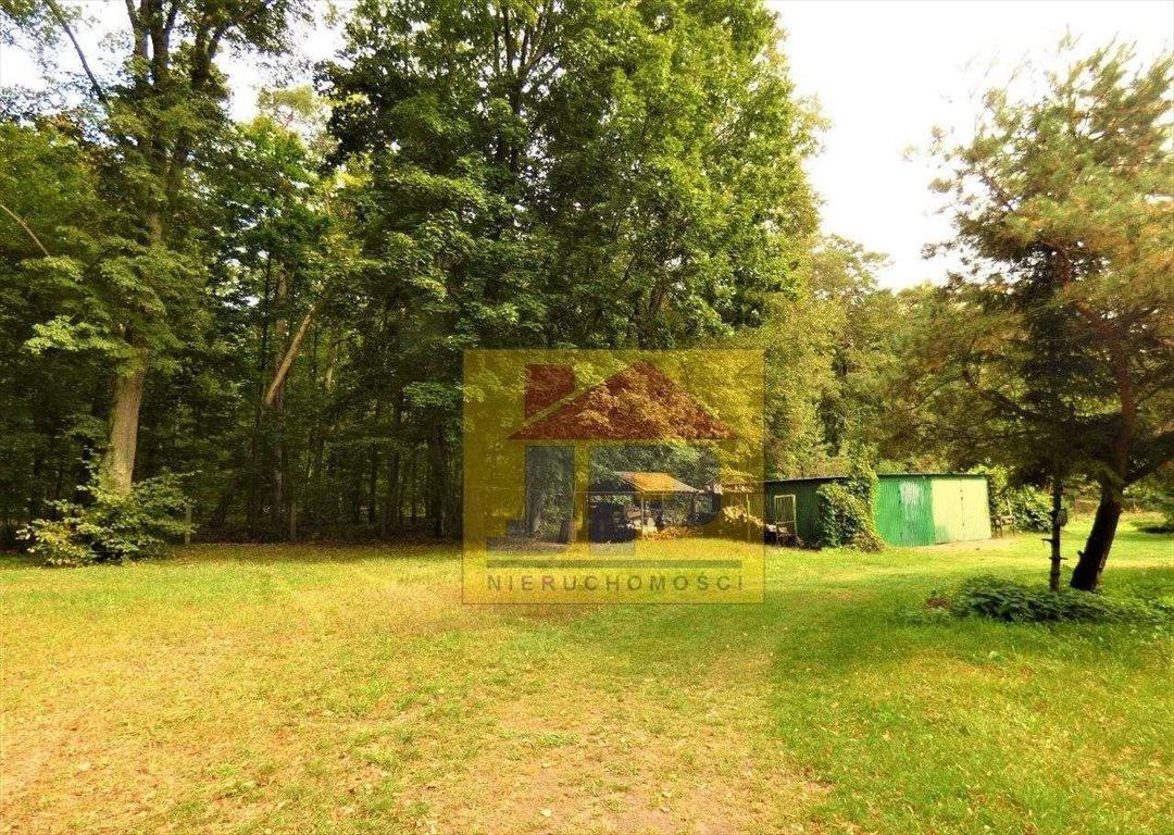 Mieszkanie dwupokojowe na sprzedaż Radomierowice  69m2 Foto 3