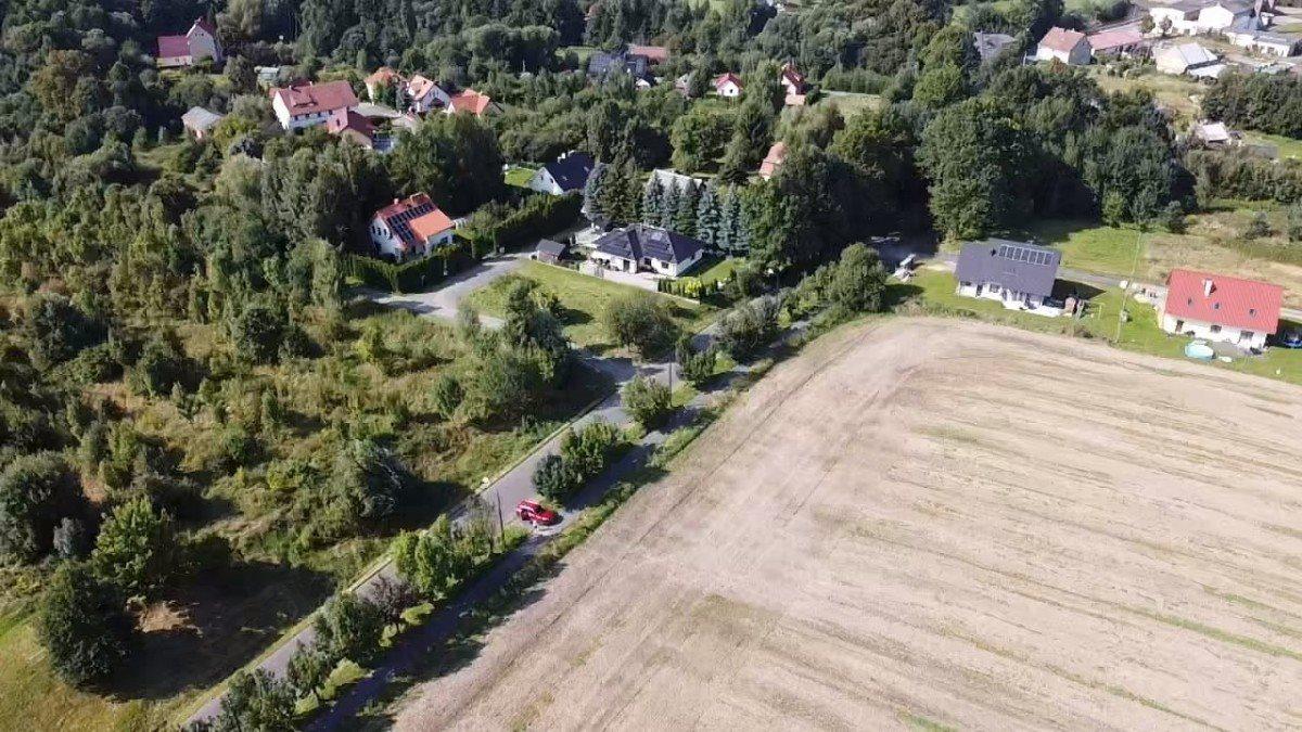 Działka rolna na sprzedaż Gryfów Śląski, Rzeczna  22430m2 Foto 3