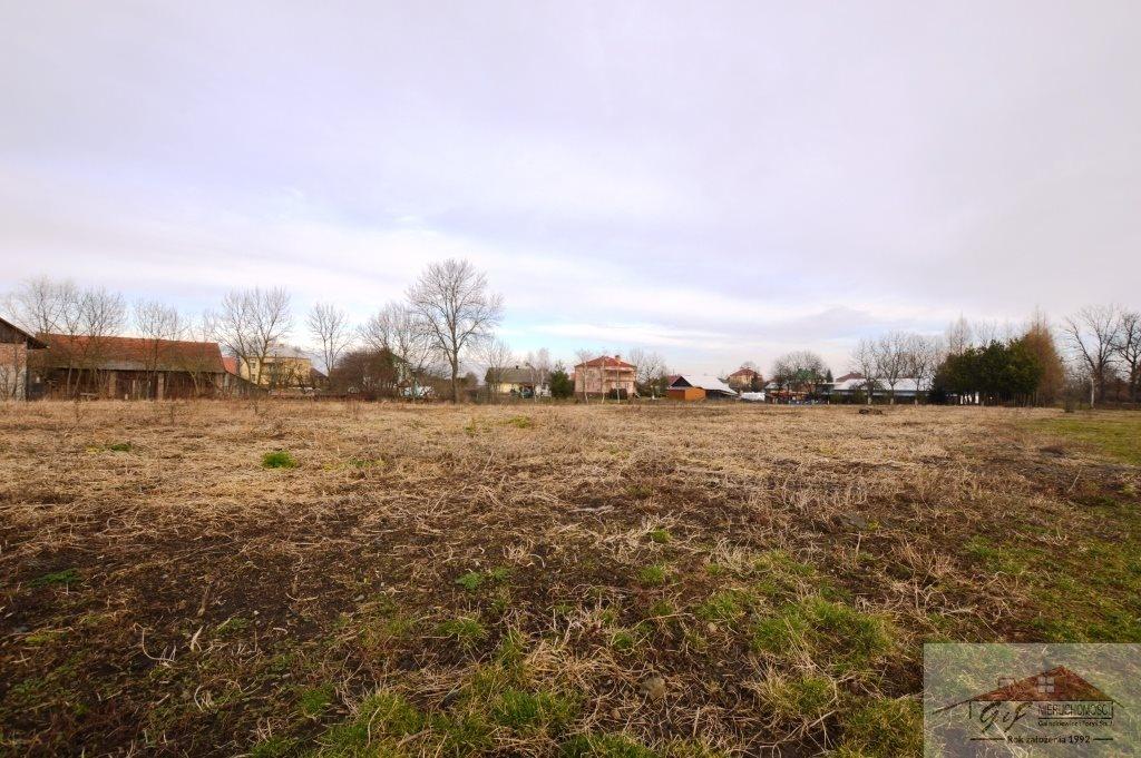 Działka budowlana na sprzedaż Leszno  4605m2 Foto 6