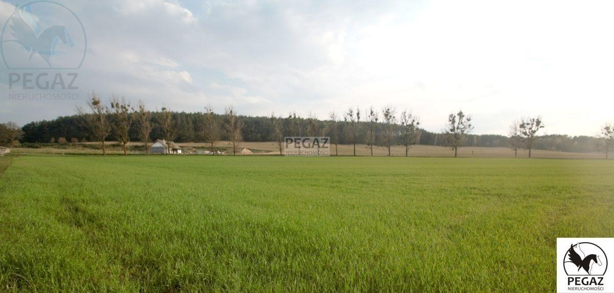 Działka rolna na sprzedaż Milcz, Holna / Zajęcza  6175m2 Foto 7