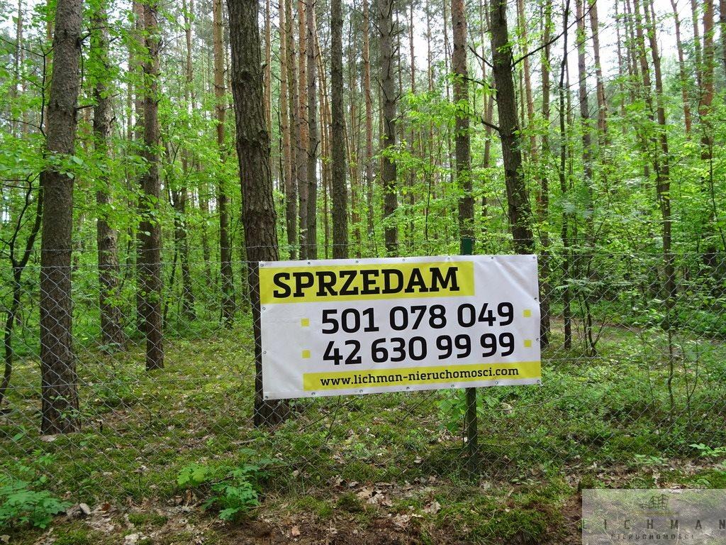 Działka leśna z prawem budowy na sprzedaż Kwiatkowice-Las  2420m2 Foto 9