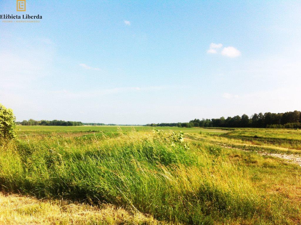 Działka rolna na sprzedaż Nałęczów  17000m2 Foto 1