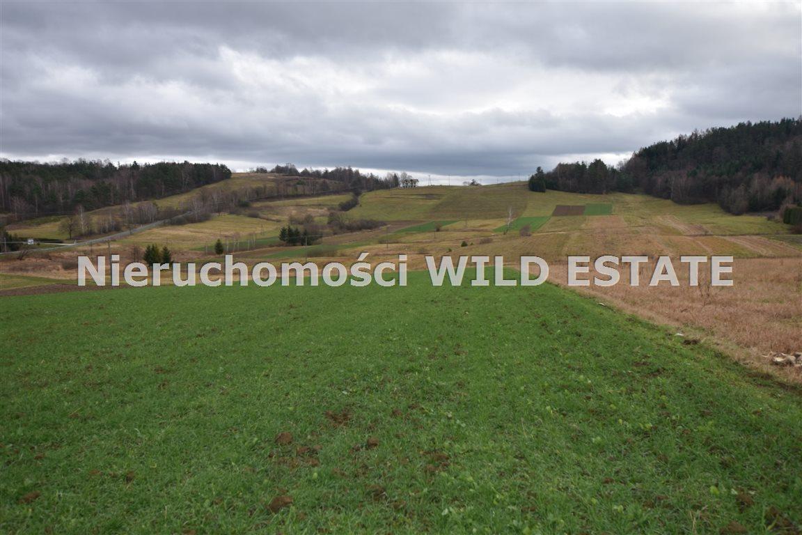 Działka rolna na sprzedaż Solina, Berezka  9520m2 Foto 7