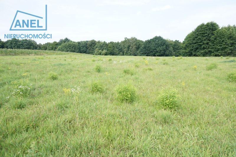 Działka rolna na sprzedaż Mikołów, Paniowy  1086m2 Foto 2