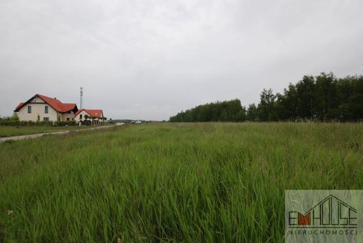 Działka budowlana na sprzedaż Mazurowice  1250m2 Foto 3