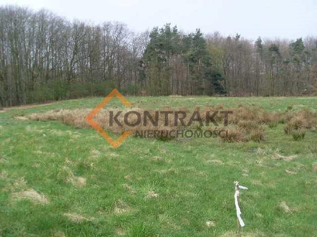Działka rolna na sprzedaż Przęsocin  3005m2 Foto 1