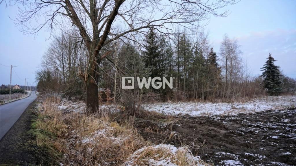 Działka budowlana na sprzedaż Zalesice, Nadrzeczna  2900m2 Foto 5