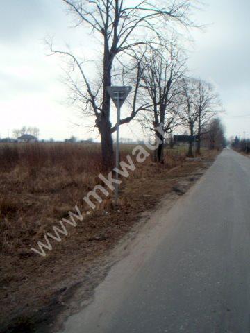 Działka inwestycyjna na sprzedaż Chrzanów Duży  10021m2 Foto 6