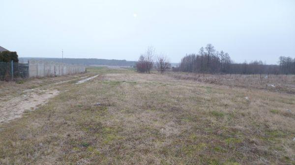 Działka rolna na sprzedaż Radom, Nowa Wola Gołębiowska  11418m2 Foto 10