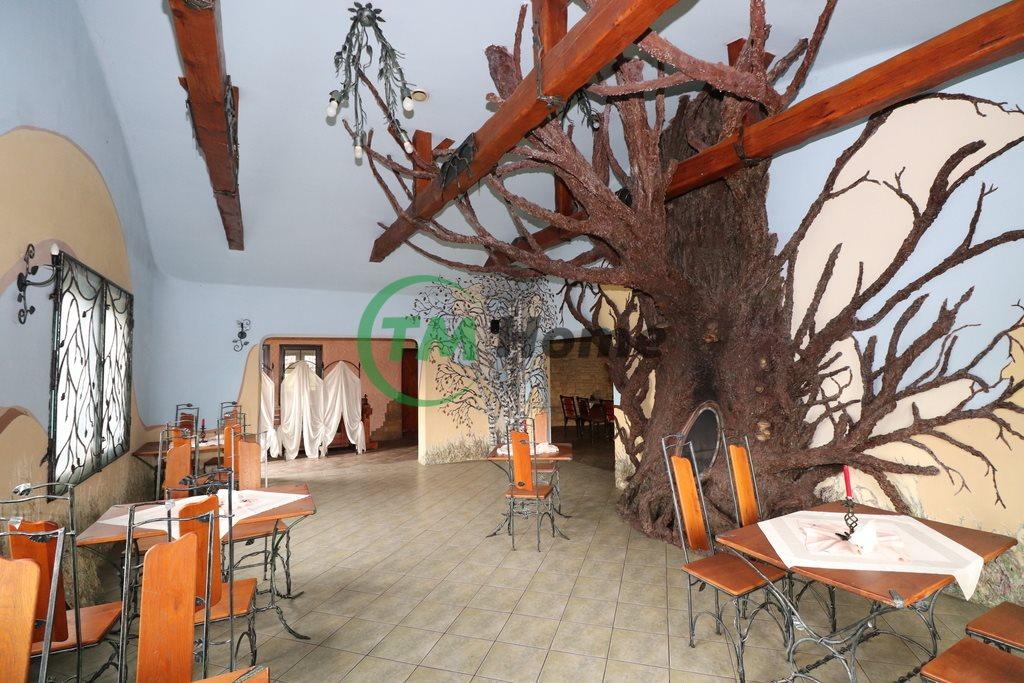 Lokal użytkowy na sprzedaż Ogrodzieniec, Kościuszki  21989m2 Foto 2