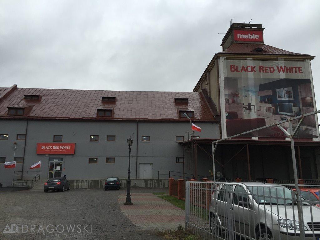 Lokal użytkowy na sprzedaż Ostrowiec Świętokrzyski  3844m2 Foto 3