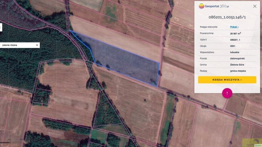 Działka rolna na sprzedaż Zielona Góra, Zatonie-Różana  26987m2 Foto 3