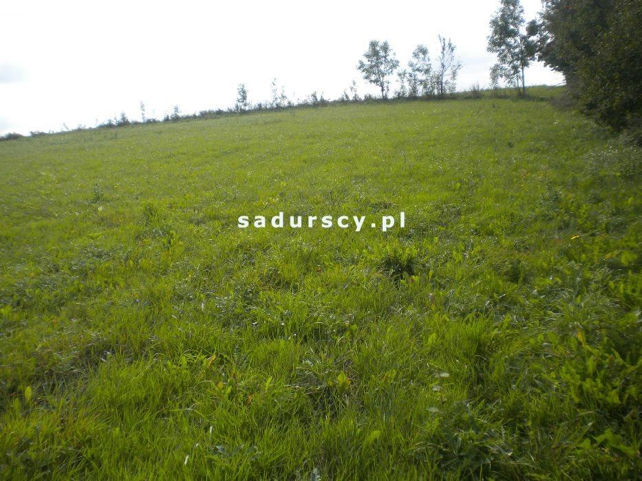 Działka rolna na sprzedaż Gołyszyn  28520m2 Foto 3