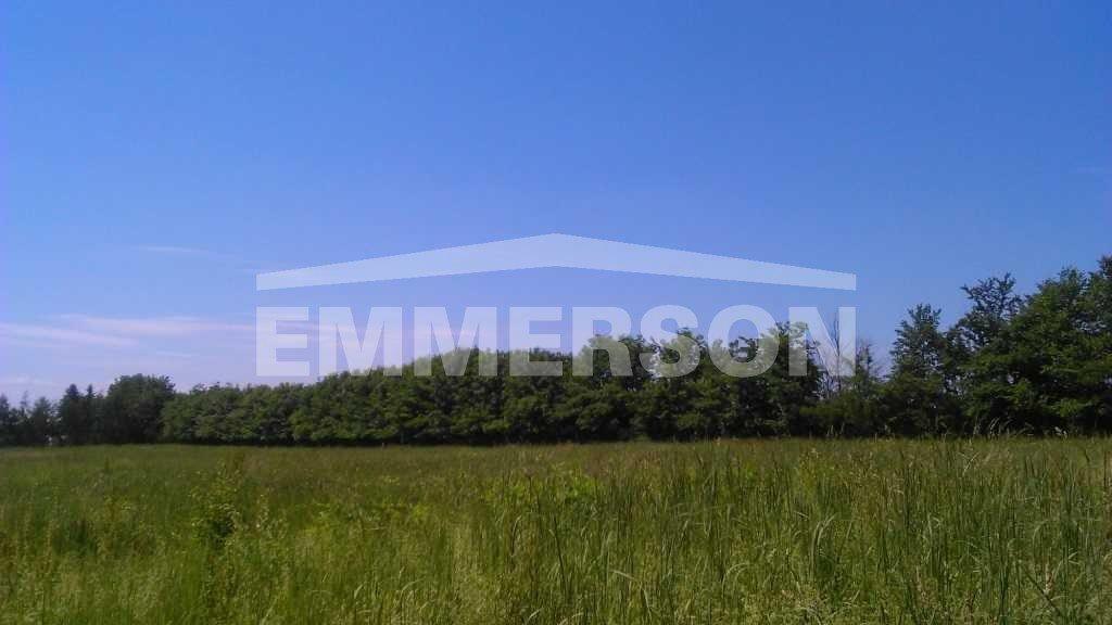 Działka budowlana na sprzedaż Lutynia, Lutynia  10000m2 Foto 4