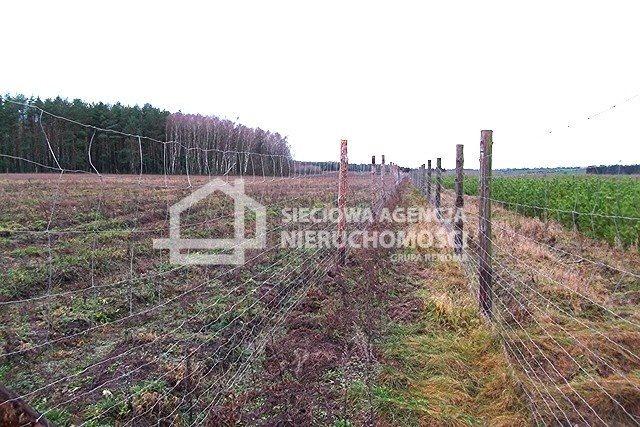 Działka leśna na sprzedaż Strzeczona  129577m2 Foto 5