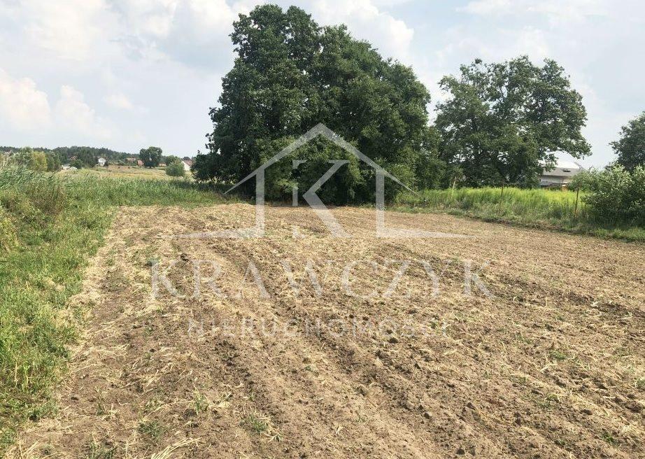 Działka rolna na sprzedaż Dobra  6399m2 Foto 1