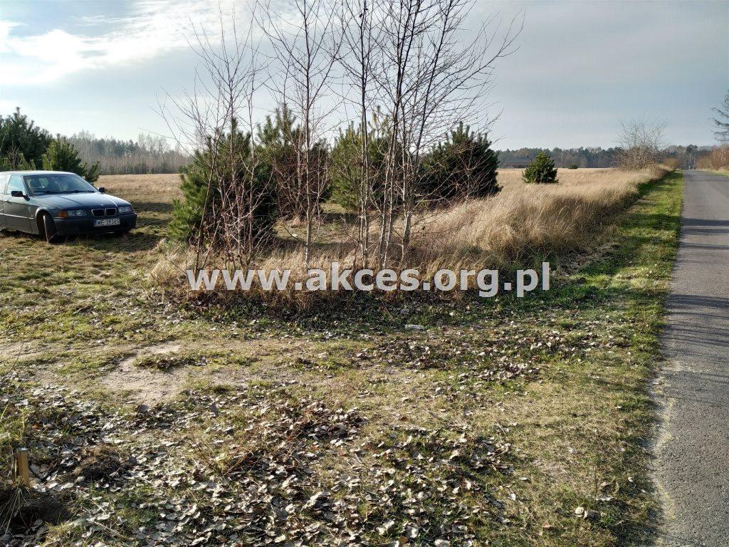 Działka siedliskowa na sprzedaż Nowa Wieś  3100m2 Foto 3