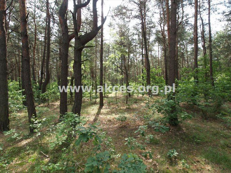 Działka leśna na sprzedaż Jeziórko  1008m2 Foto 1