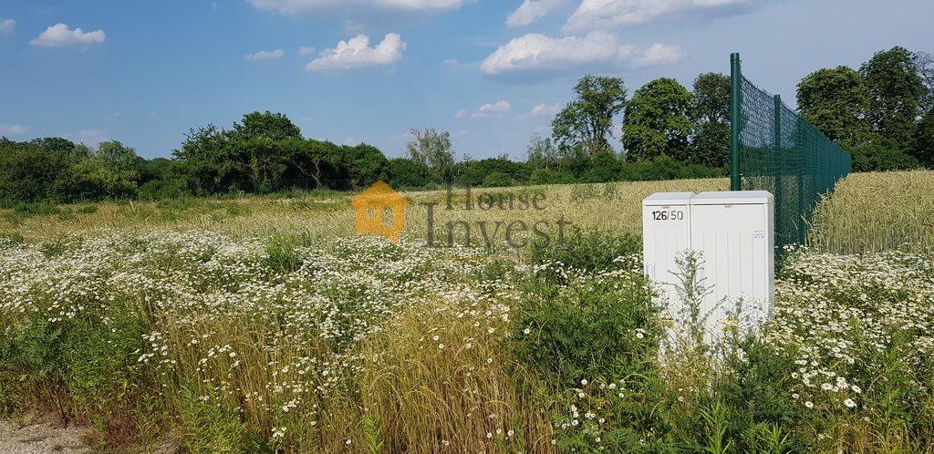 Działka inwestycyjna na sprzedaż Krępice  3201m2 Foto 1