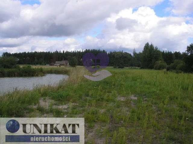 Działka rolna na sprzedaż Woźnawieś  21700m2 Foto 8