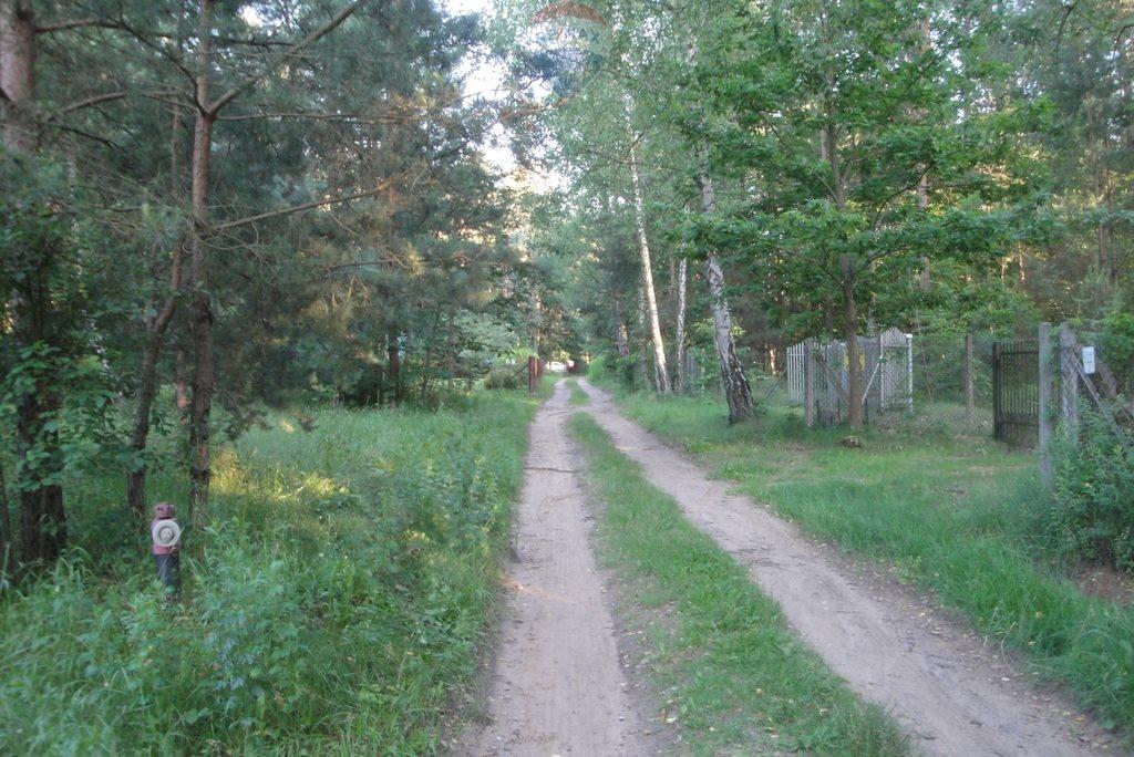Działka rekreacyjna na sprzedaż Lasek, Sosnowa  2659m2 Foto 8