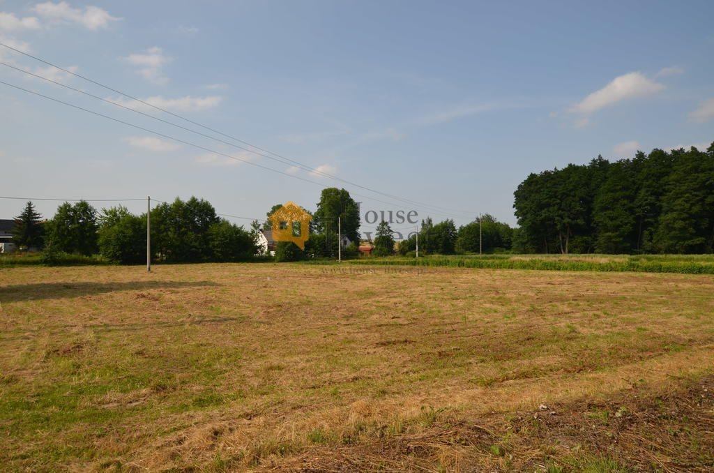 Działka budowlana na sprzedaż Lubiatów  3700m2 Foto 3