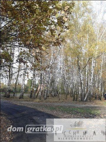 Działka leśna na sprzedaż Łódź, Bałuty  9761m2 Foto 2