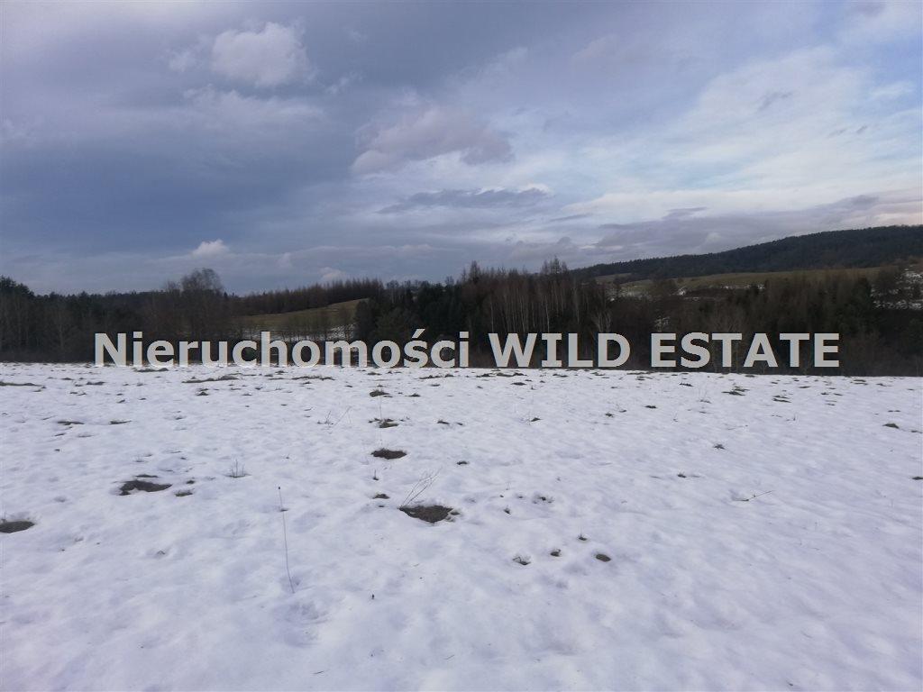 Działka rolna na sprzedaż Lesko, Dziurdziów  34742m2 Foto 7