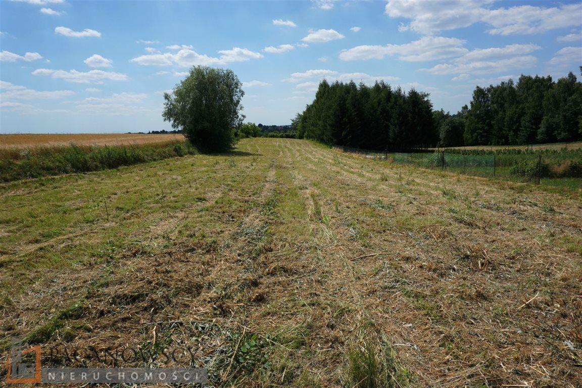 Działka budowlana na sprzedaż Sieborowice  1400m2 Foto 1
