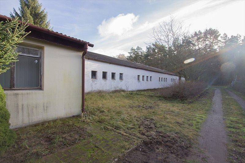 Działka budowlana na sprzedaż Trzeszczyn  14785m2 Foto 1