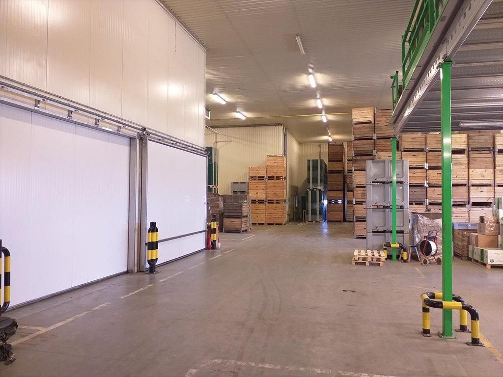Lokal użytkowy na sprzedaż Mniszew  2000m2 Foto 8