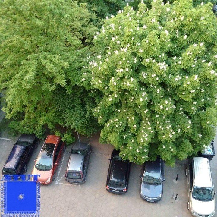 Mieszkanie dwupokojowe na wynajem Gliwice, Centrum, Ksawerego Dunikowskiego  39m2 Foto 11